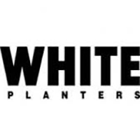 White Planters Home Page